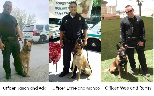 Officers and dogs corrected